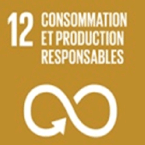csr responsible consumption and production