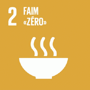 csr zero hunger