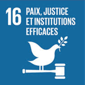 csr peace justice and effective institutions